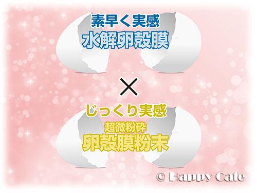2つの卵殻膜成分