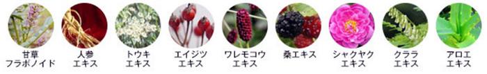 9種類の天然美容成分