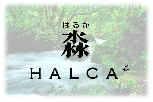 HALCAの由来